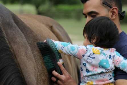 Equine-assisted therapy_wounded warriors